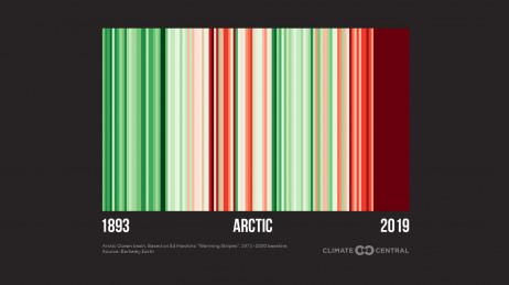 Arctic Stripes