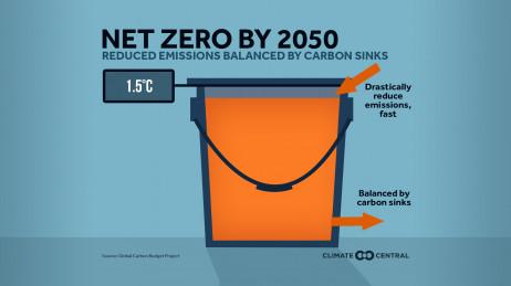 Net Zero by 2050