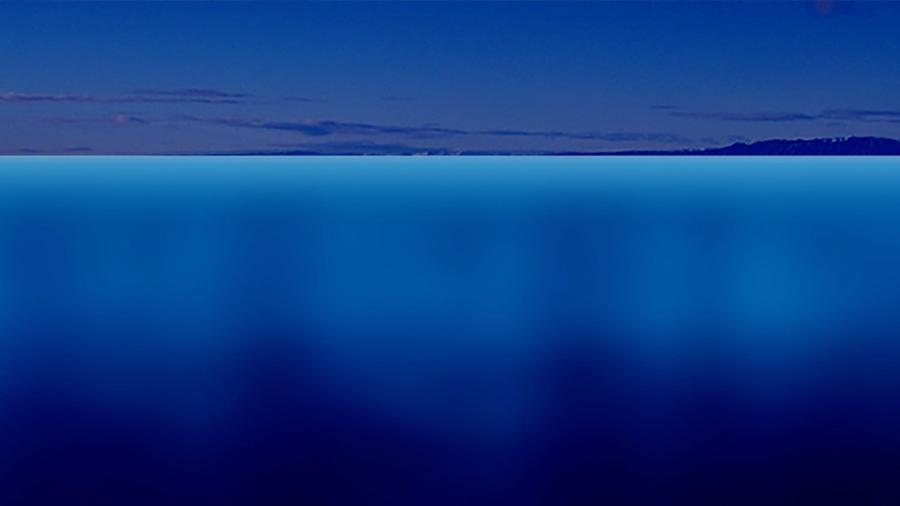 Water/Sea Ice